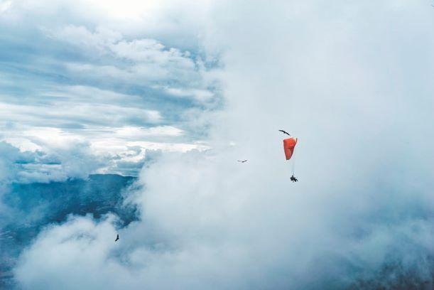 Ein Gleitschirmflieger schwebt in einem bewölkten Himmel, Vögel fliegen um ihn herum