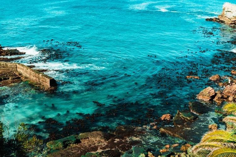 Der klare blaue Ozean in Hermanus, Südafrika