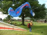 Paragliding Fluggebiet Europa » Schweiz » Bern,Planplatten,Nicht jeder verfehlt am Landeplatz den Baum! Petsch, Fly In 06 Foto by Vaudee