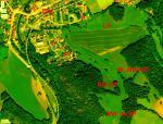 Paragliding Fluggebiet ,,Fußaufstieg für NW..N..NO-SP Waldweg links u. für W..NW-SP rechts im Bild