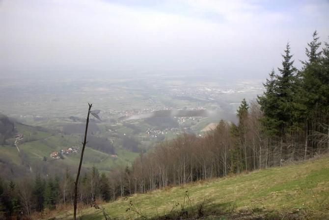 Blick über das Rheintal vom Startplatz aus