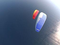FlyingFish Oktober 2005 Advance BiBetas