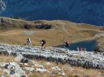 Paragliding Fluggebiet Europa » Österreich » Steiermark,Loser,Auf zum W-Start... In der Hintergrund der O-Start