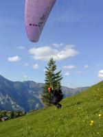 Paragliding Fluggebiet Europa » Schweiz » Bern,Axalp,