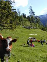 Paragliding Fluggebiet Europa » Schweiz » Bern,Axalp,...aufmerksame Beobachter am Start...