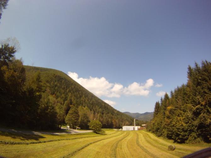 Die Landewiese