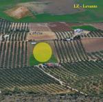 Paragliding Fluggebiet Europa » Spanien » Andalusien,Sierra de Loja,Loja -Levante: LZ