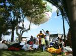 Paragliding Fluggebiet Europa » Portugal » Madeira,Chão da Lagoa,Die portugiesische Nationalmannschaft beim Workshop auf Madeira, Schirmpacken unter Palmen, im Windschatten des Fesselballons, direkt am Yachthafen von Funchal