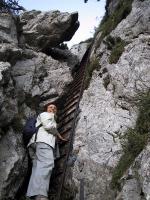 Paragliding Fluggebiet Europa » Schweiz » Schwyz,Rigi Hochflue,Die Eisenleiter zum Abstieg