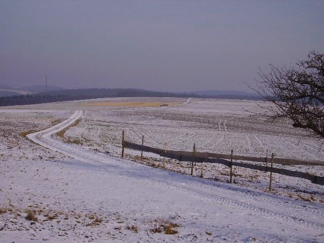 Blick vom Startplatz Richtung Osten. Schleppstrecke endet nicht weit vor der Waldkante am Horizont.