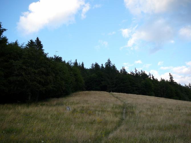 """Der """"beschwerliche Weg"""" ca. 150 m zum Startplatz"""