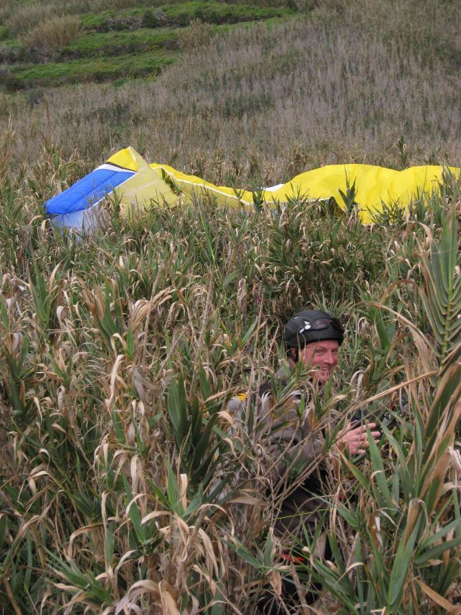 """neben der """"Landebahn"""" in Achadas da Cruz/Madeira,.... Bushman ;-) weiches und hohes """"Gras"""", Augen zu und durch ;-)"""