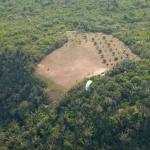 Paragliding Fluggebiet Südamerika » Brasilien,Sitio do Bosco,SP