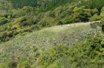 Paragliding Fluggebiet Asien » Japan,Mt.Kura,SP