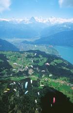 Paragliding Fluggebiet Europa » Schweiz » Bern,Niederhorn,SM 1999  mit freundlicher Bewilligung ©www.azoom.ch