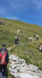 Paragliding Fluggebiet Europa » Schweiz » Glarus,Brunnenberg/Bärensol - Leuggelstock,Aufstieg zum Gummengrat