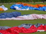 Paragliding Reise Bericht Europa » Frankreich » Rhone-Alpes,Frühling in St. Hilaire,Viel los auf dem Teppich